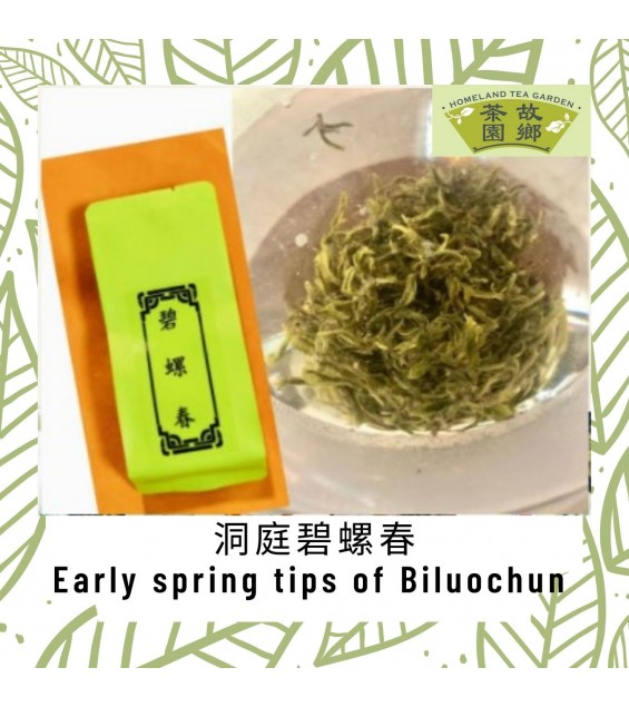 Set of 7 Assorted Traditional Handicraft Premium Early Spring Green Tea